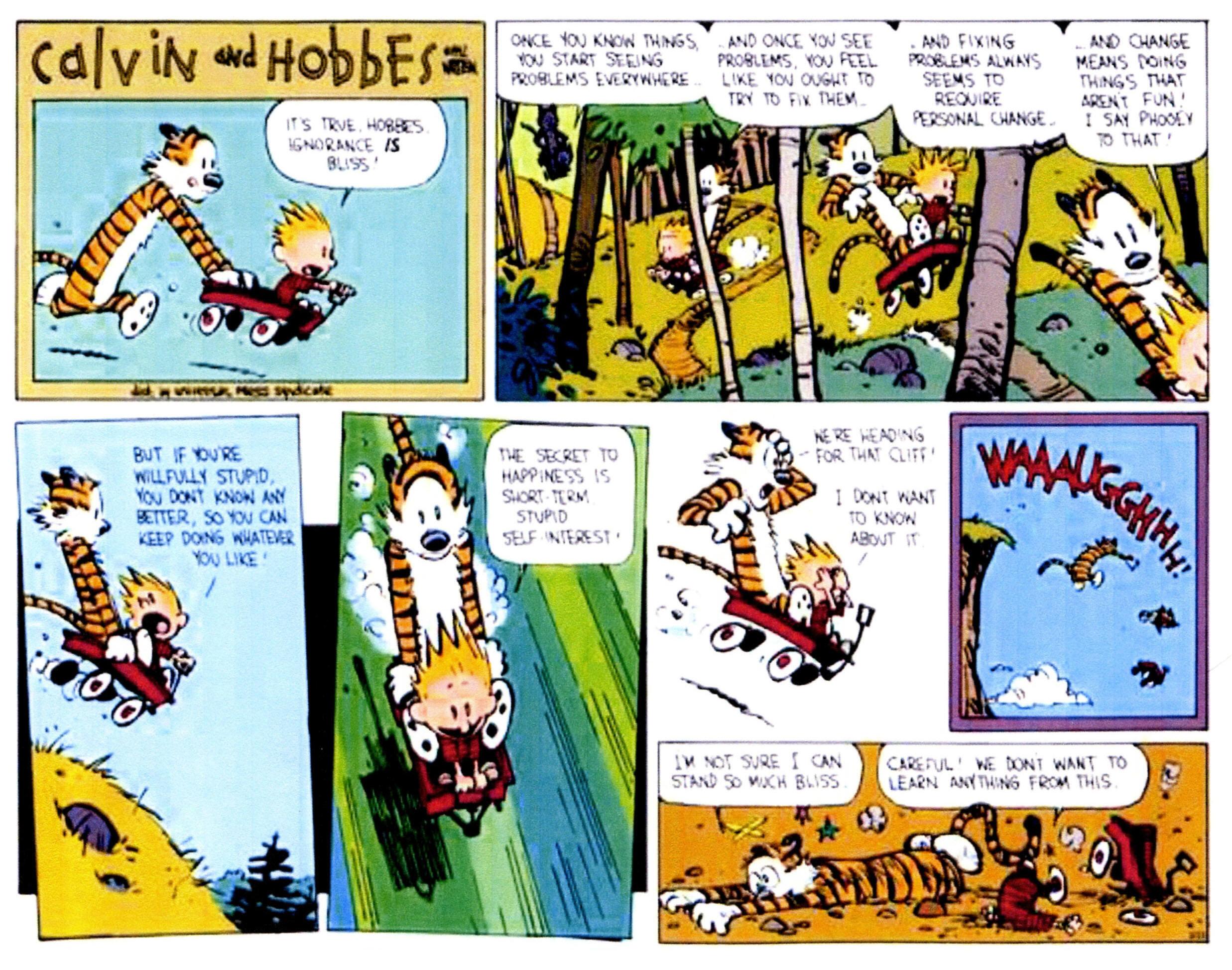 Calvin & Hobbs wisdom